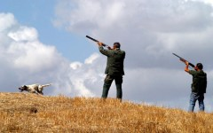Montevarchi: cacciatore ferito alla schiena durante una battuta. Ricoverato a Careggi in codice rosso