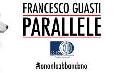 Firenze: contro l'abbandono degli animali, videoclip musicale di Giani, Quartini e Galletti in Consiglio regionale