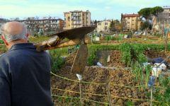 Firenze: nordafricano ruba il cellulare a un pensionato