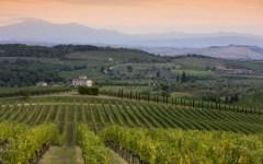 Chianti classico: collaborazione con lo Champagne per l'eccellenza enologica