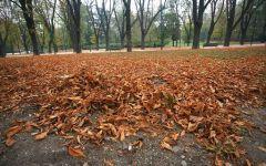Meteo: a metà settimana arriva l'autunno, perturbazioni e temperature in ribasso