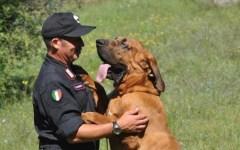 Signa: suicidio di imprenditore sventato dai carabinieri. Lo hanno rintracciato grazie al fiuto dei cani