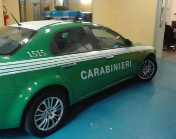 auto-carab