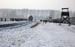 Toscana, Treno della memoria 2017 per Auschwitz: 60 posti per gli studenti universitari. Aperte le iscrizioni