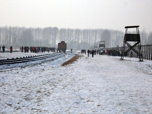 Ragazzi in visita al campo di Birkenau