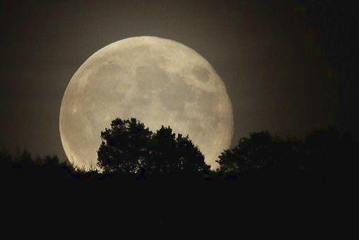 Luna record, stasera 14 novembre 2016