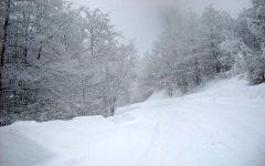 Arezzo: nevicata sull'appennino, soccorse anziana (con i suoi cani) e una famiglia bloccate dalla neve