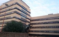 Consip: Procura revoca delega indagini al Noe dei carabinieri per ripetuta fuga di notizie