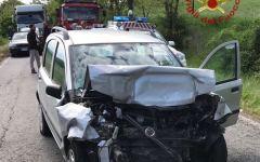 Pomarance (Pi): investe un daino e si scontra con altra auto. Ricoverata in gravi condizioni, morto l'animale