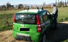 Calenzano: due bracconieri deferiti dai Carabinieri forestali all'Autorità giudiziaria. sequestrate armi e munizioni