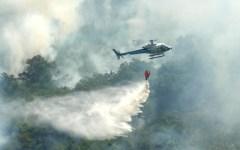 Grosseto: incendio a Montemassi. Minacciate le case di Roccastrada. Interviene l'elicottero della Regione