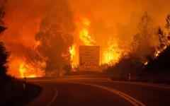 Portogallo, incendio nella foresta di Pedrogao Grande: oltre 60 morti. Almeno 18 carbonizzati nelle auto intrappolate dalle fiamme
