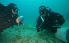 Sub di Lucca muore mentre visita relitto dell'U-Boot 455. Nel mare di Camogli