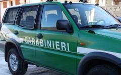 Incendi: l'Unione sindacale di base accusa i vertici dei carabinieri