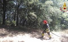 Incendi: mancano vigili del fuoco ed ex forestali, la denuncia del sindacato Conapo