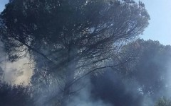 Follonica (Grosseto): incendio in pineta fra due campeggi. Paura. L'intervento di due elicotteri