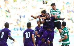 Fiorentina: Pioli chiede rinforzi a Cognigni e Corvino. Da Genoa e Sassuolo «no» per Simeone e Politano
