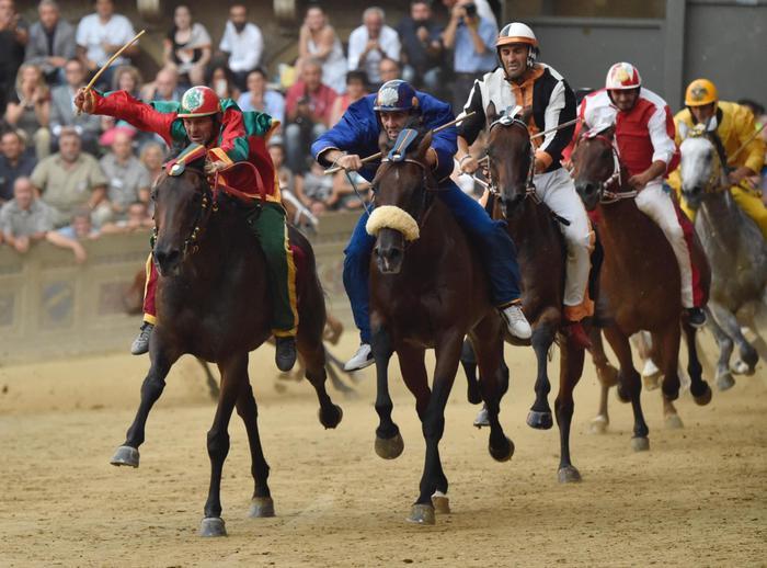 Palio di Siena, assegnati i cavalli. Esultano Valdimontone, Istrice e Torre