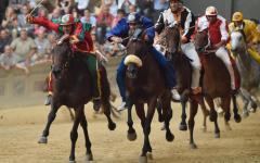 Palio di Siena: Tartuca, Leocorno e Giraffa, estratte a sorte, completano il lotto delle 10 partecipanti