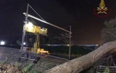 Livorno: ritardi circolazione dei treni, albero cade sui binari
