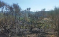 Castiglion Fiorentino: cadavere carbonizzato rinvenuto dai vigili del fuoco che spengono incendio