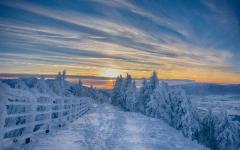 Allerta termica: da lunedì 26 arriva il Buran, vento gelido siberiano, temperature ampiamente sotto lo zero (-14 - 15°)