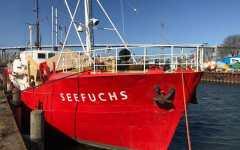 Migranti: le navi Ong, respinte da Malta, continuano a portarli in Italia. E l'Europa sta a guardare
