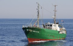Migranti: Sea Eye soccorre gommone con 64 persone al largo della Libia, contravvenendo alle disposizioni delle autorità