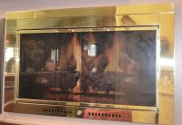 40x25 Inch Polished Brass Contemporary Fireplace Door