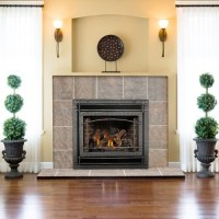 Napoleon GD70, Napoleon GD70 Direct Vent Fireplace ...