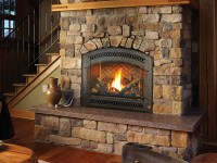 864 TRV GSR2 Gas Fireplace | The Fireplace Place