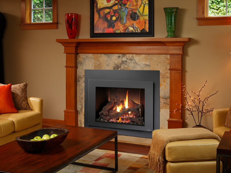 616 GSR Gas Fireplace Insert  The Fireplace Place