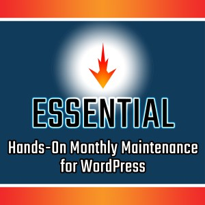 Essential WordPress Maintenance Services