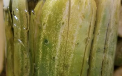 Food Stories : The Family Pickle Recipe