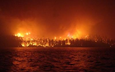 Review of BC's 2017 wildfires calls for overhaul of disaster response practices