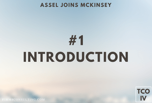 Assel Joins McKinsey, TCO 4