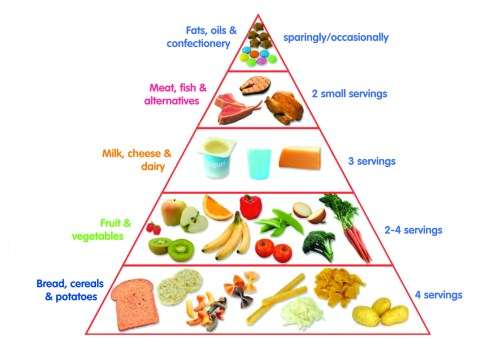 small resolution of food pyramid