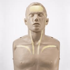 Brayden CPR Manikin with Illumination Lights