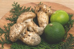 Sudachi limes with matsutake mushrooms