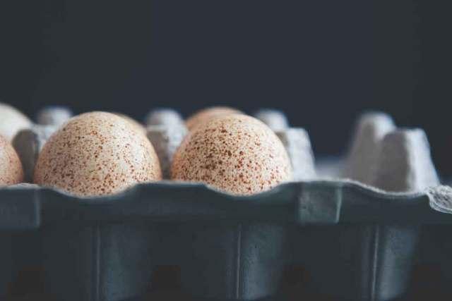 Turkey eggs