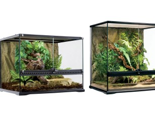 Natural_Terrarium_Family
