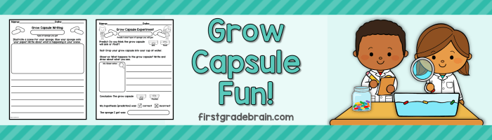 Grow Capsule Fun!  Free Writing and Science Activity