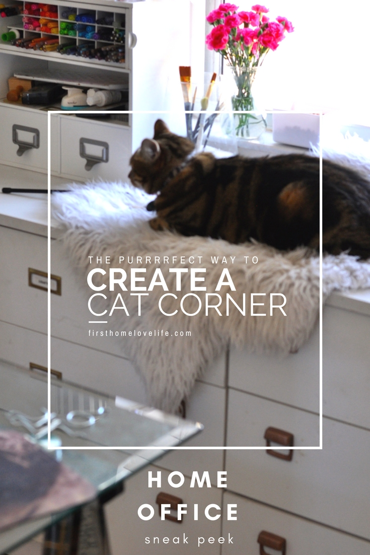 Cozy Cat Corner Home Office First Home Love Life