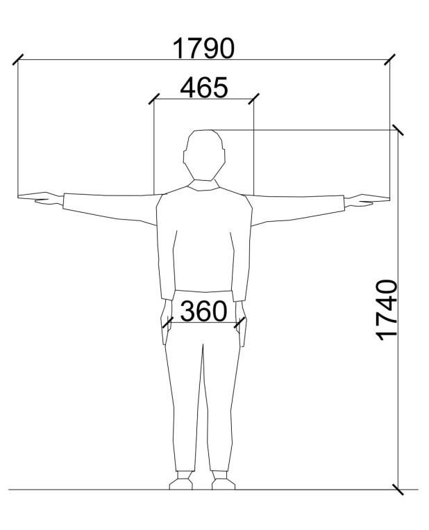 Standard Male Dimensions