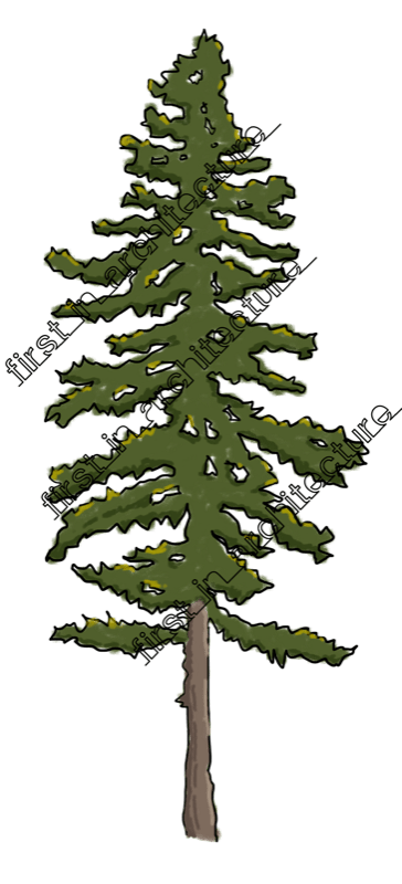 FIA Trees Elevation 03