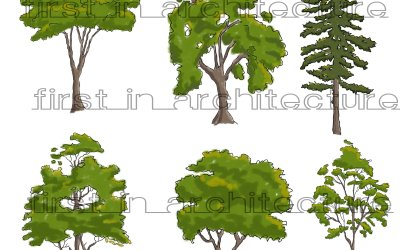 PSD Downloads – Sketchy Trees