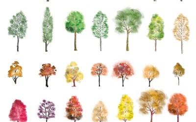 Photoshop Colour Trees download