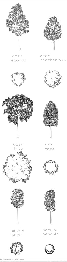 FIA CAD Blocks Trees 05