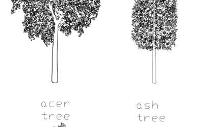 CAD Blocks – Tree Pack 05
