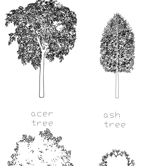 CAD Blocks – Tree Pack 05